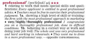 Professional4